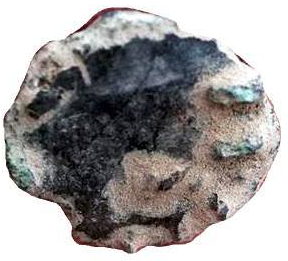 olivier1