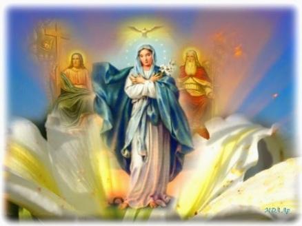 Afbeeldingsresultaat voor de drie voorrechten van Maria