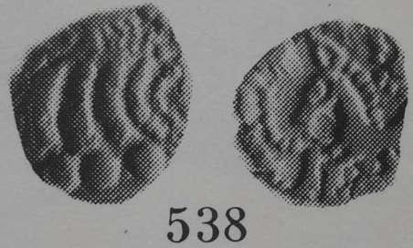 friso4.2-800